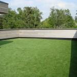 artificial grass (1)