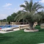 artificial grass (3)
